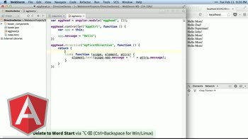 angularjs tutorial about Directive Definition Object (DDO)