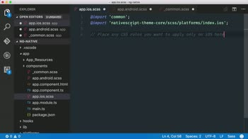 AngularJS tutorial about Create a custom app theme using SASS for NativeScript