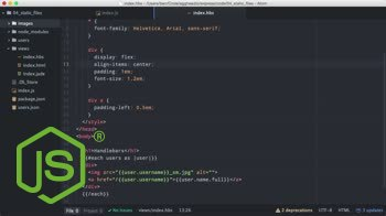 AngularJS tutorial about Getting Started with Express - Static Files